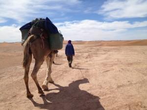 Sahara Trek