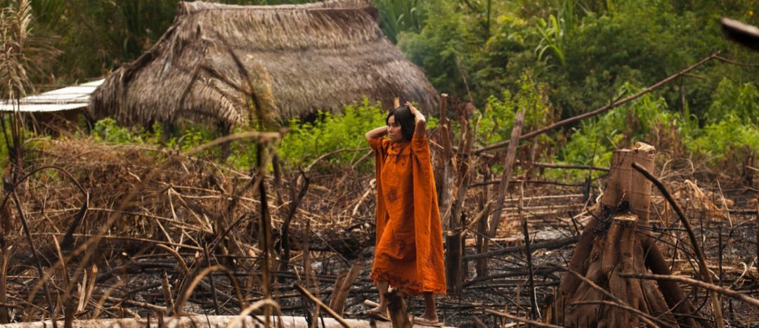 Tourism Declares a Climate Emergency