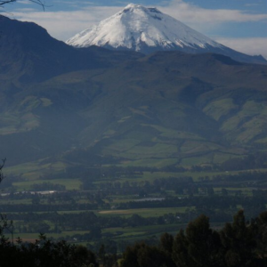 Cotopaxi and the Avenue of Volcanos