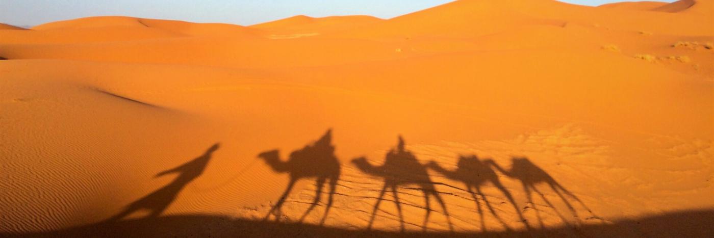 Camel Trekking Sahara | Morocco