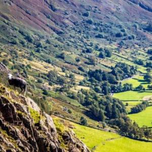 Lake District 24 Peaks in 24 Hours