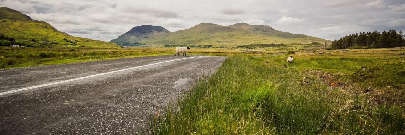 Cycling Ireland East Coast
