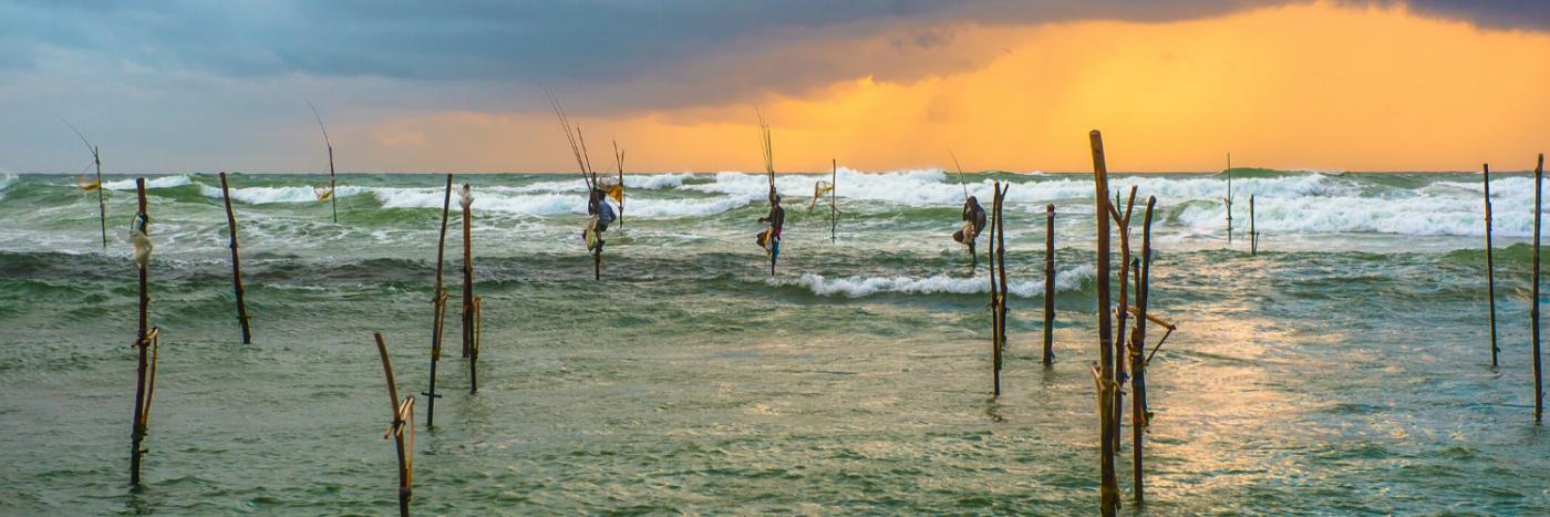 Sri Lanka | Cycle Top to Tail