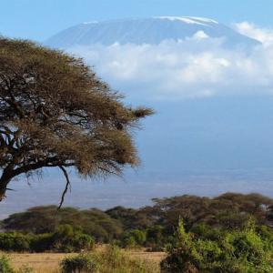 Kilimanjaro Trek