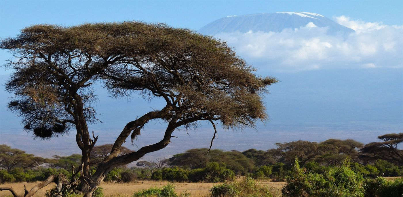 Everything you need to know about climbing Mt Kilimanjaro | Adventurous Ewe