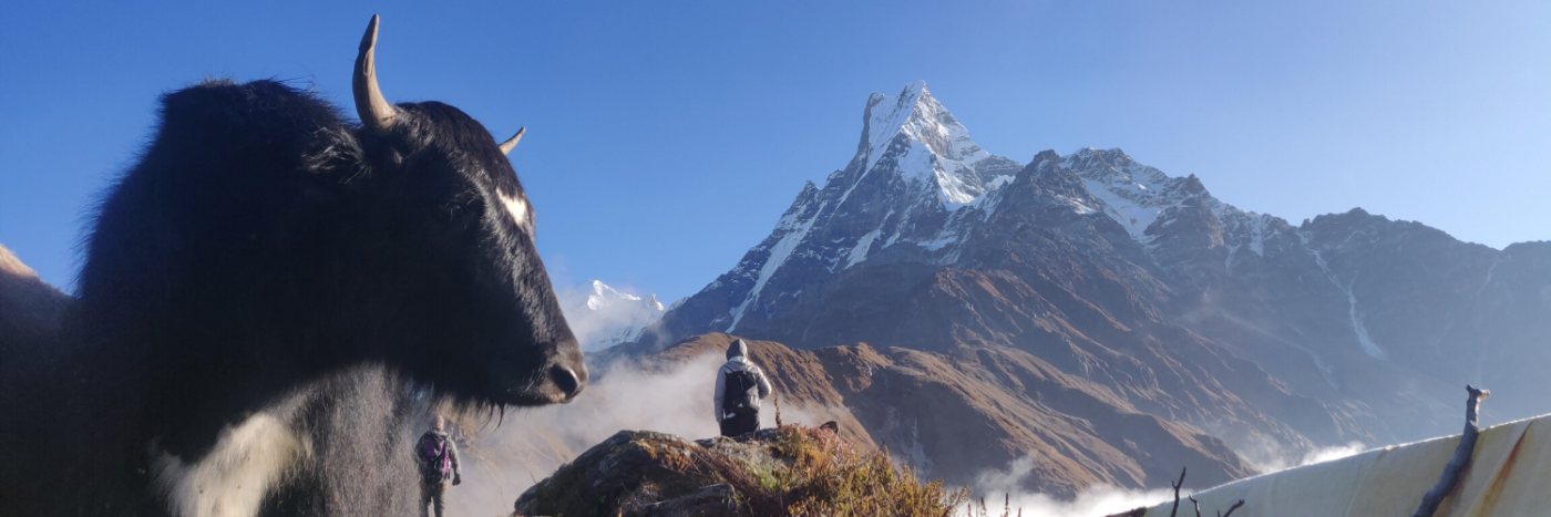 Trek Nepal with Adventurous Ewe
