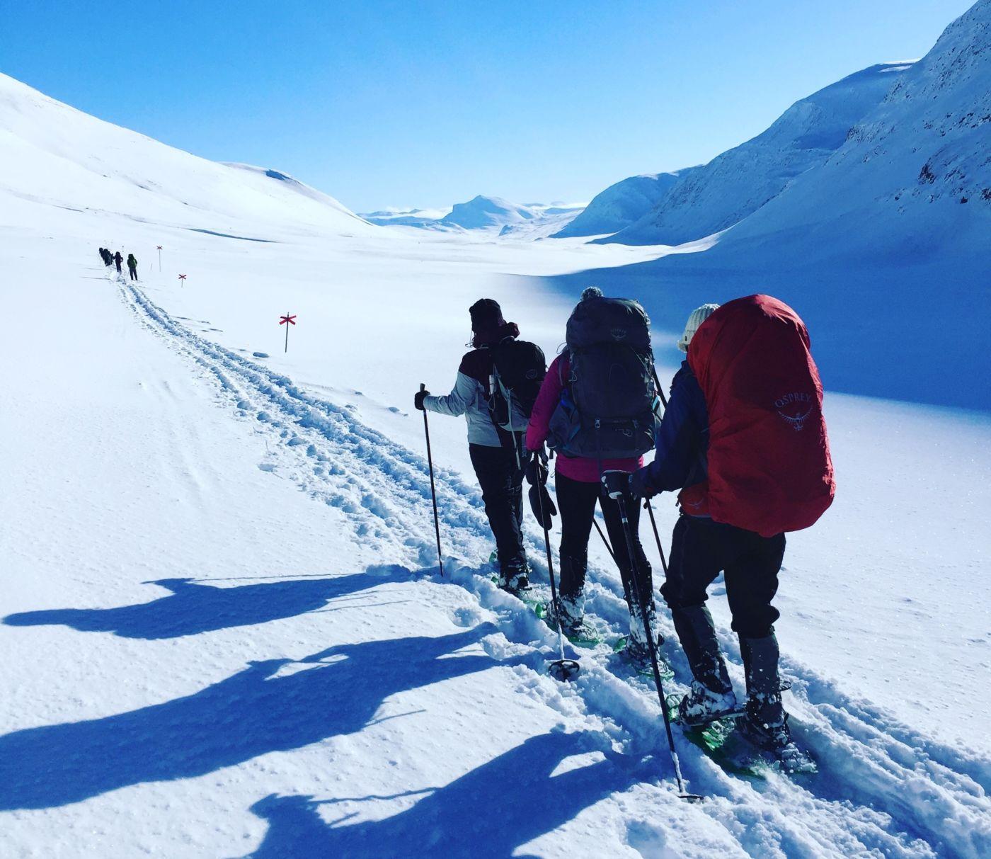 Arctic Snowshoe Trek in Abisko National Park