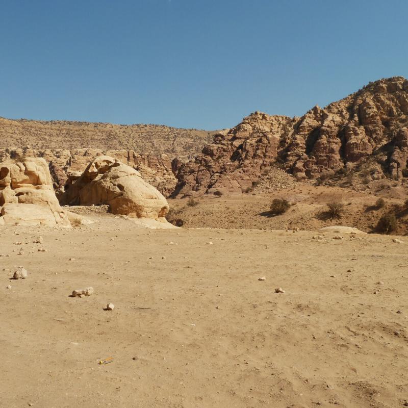 Camel Trek in the Sahara Desert