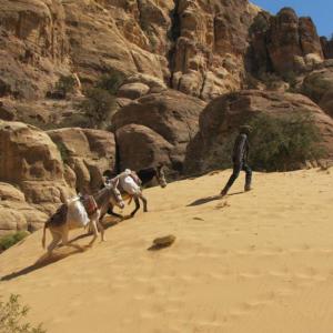 Trek to Ancient Petra, Jordan