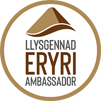 Eryri Bronze Ambassador Badge